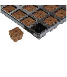 Eazy Plug Stecklings Gewächshaus Set