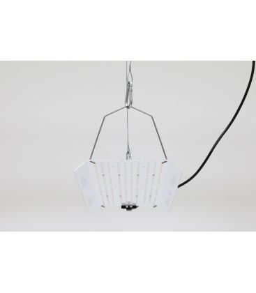 hortiONE 592 V2 - LED Leuchte inkl. Netzteil, 190W
