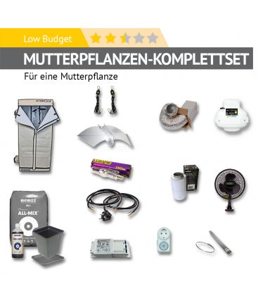 """Mutterpflanzen-Set """"Low Budget"""""""