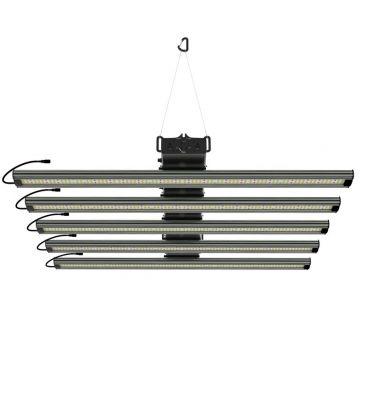 Greenception GCx 25 LED