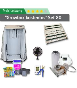 80er Box Preis-Leistungs-Set (GROWBOX KOSTENLOS)