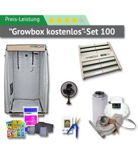 100er Box Preis-Leistung-Set (GROWBOX KOSTENLOS)