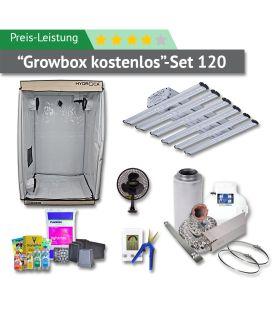 120er Box Preis-Leistung-Set (GROWBOX KOSTENLOS)