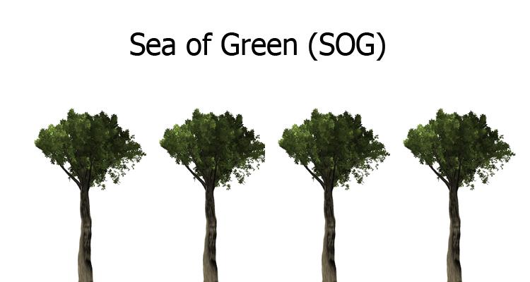 SOG-Schema als Schaubild