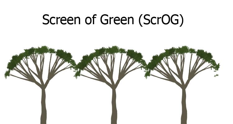 ScrOG-Schema als Schaubild