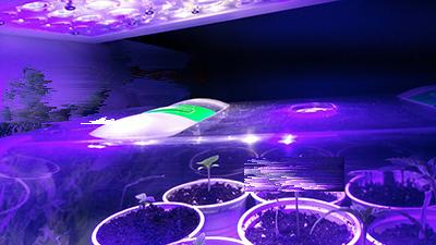 Nun werden die Pflanzgefässe in das Zimmergewächshaus gestellt