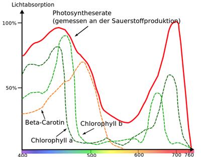 PAR - für die Photosynthese relevantes Lichtspektrum