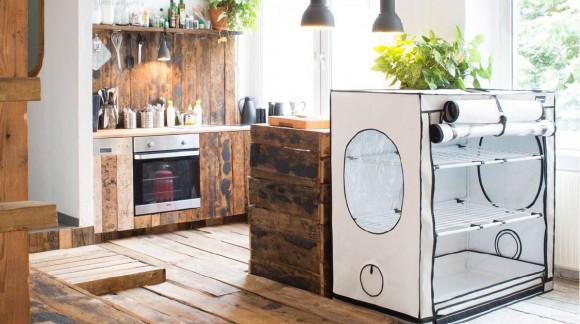 Neu im Sortiment: Hombox Ambient und Homebox Vista